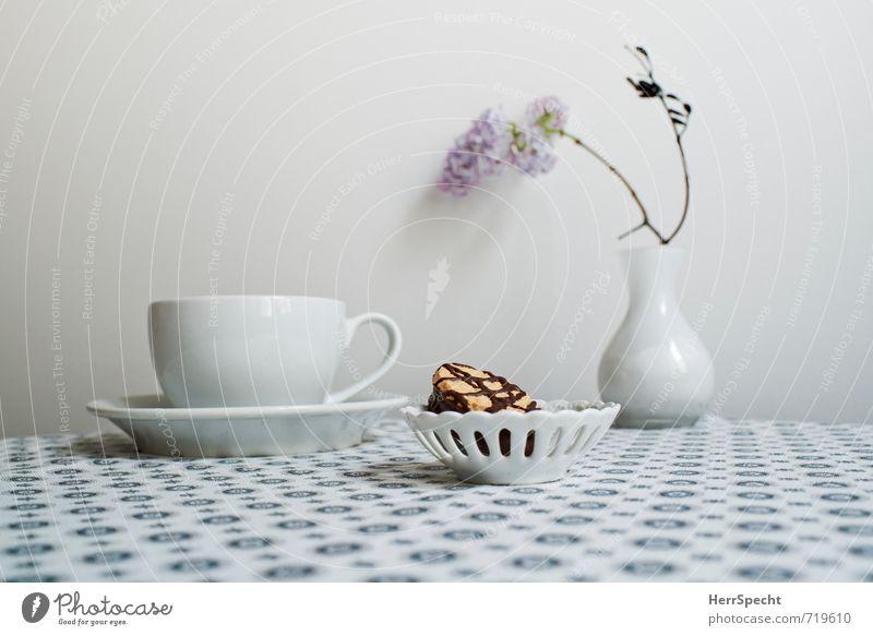 Kaffeepause mit Flieder Heißgetränk Kakao Tee Häusliches Leben Innenarchitektur Dekoration & Verzierung Tisch ästhetisch schön retro rund Sauberkeit grau weiß
