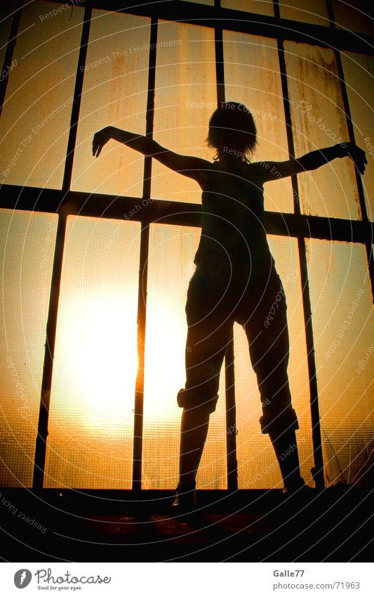 Free like a bird Sonne Sommer Erholung Wärme fliegen frei Physik Meditation Yoga