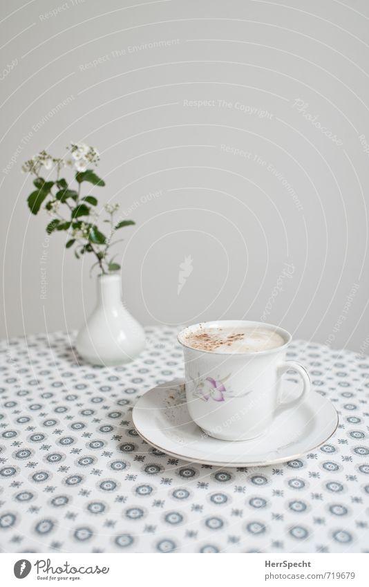 Schnelles Frühstück Getränk Heißgetränk Kaffee Häusliches Leben Tisch Küche schön retro rund Sauberkeit grau weiß Cappuccino Milchkaffee Kaffeeschaum Vase