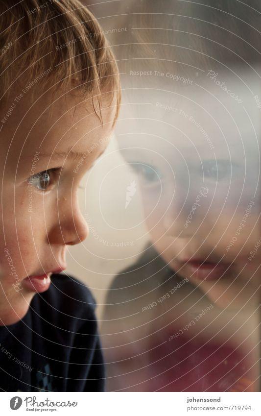 Spiegelbild Mensch Kind Fenster Gesicht Auge Junge Denken träumen maskulin Zufriedenheit Kindheit leuchten Lächeln beobachten lernen Freundlichkeit