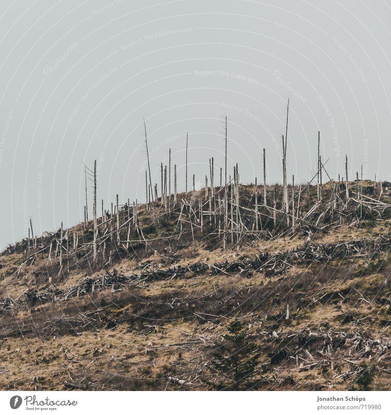 ganz schön zermöbelt Umwelt Natur Landschaft schlechtes Wetter Wald Hügel hässlich Trauer Schmerz Enttäuschung gefährlich Zerstörung Schottland Isle of Skye