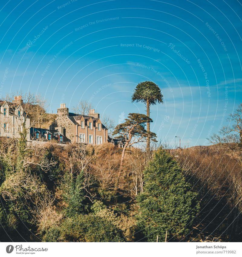 Portree / Isle of Skye IX Himmel Natur blau Baum Landschaft Haus Winter Wald Umwelt einzeln ästhetisch Schönes Wetter Dorf Baumkrone Schornstein Kleinstadt