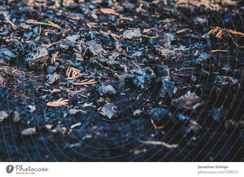 Lagerfeuer (Vergangenheit) Ferien & Urlaub & Reisen dunkel schwarz Umwelt Luft Erde ästhetisch Boden Urelemente Feuer Vergangenheit Müll heiß Sommerurlaub Grillen brennen