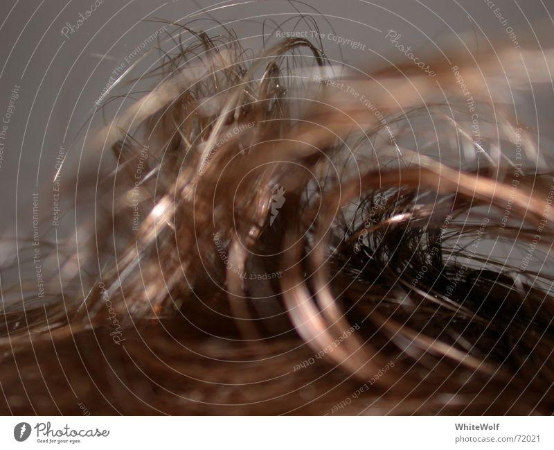Haarig aufstehen Haare & Frisuren zerzaust Makroaufnahme Nahaufnahme Schlafzimmer Morgen verstrubelt strubelig ungestrählt Müdigkeit