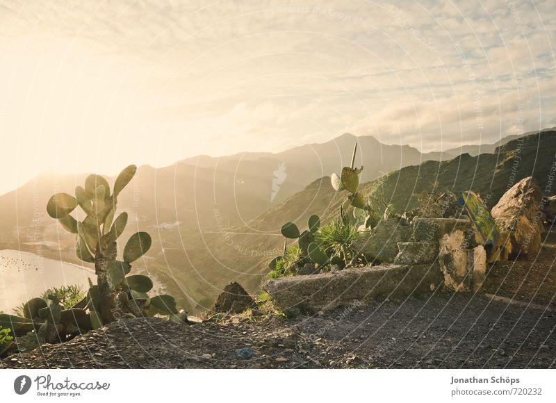 *** 750 *** SOMMER, SONNE, KAKTUS Himmel Natur Ferien & Urlaub & Reisen Pflanze Meer Landschaft Umwelt Berge u. Gebirge Wärme Reisefotografie Küste Felsen