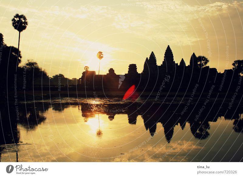 Angkor Wat Sonne Schönes Wetter Baum Turm Armut ästhetisch schön braun gelb gold schwarz Abenteuer einzigartig elegant erleben Ferien & Urlaub & Reisen