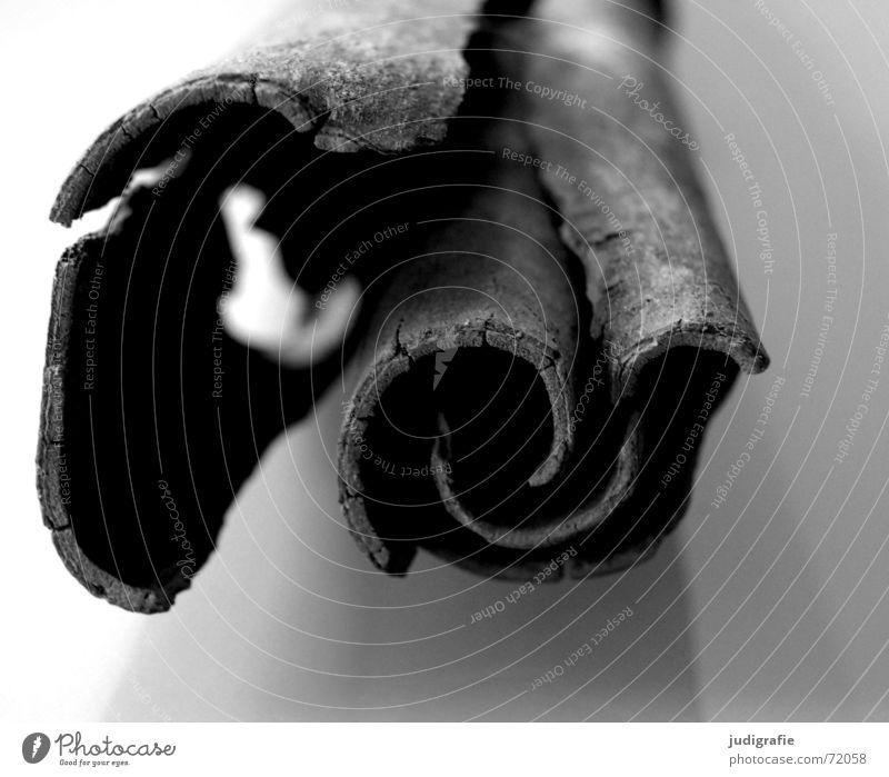 Zimt schwarz Ernährung Lebensmittel Kräuter & Gewürze lecker Duft aromatisch Foodfotografie zusammengerollt