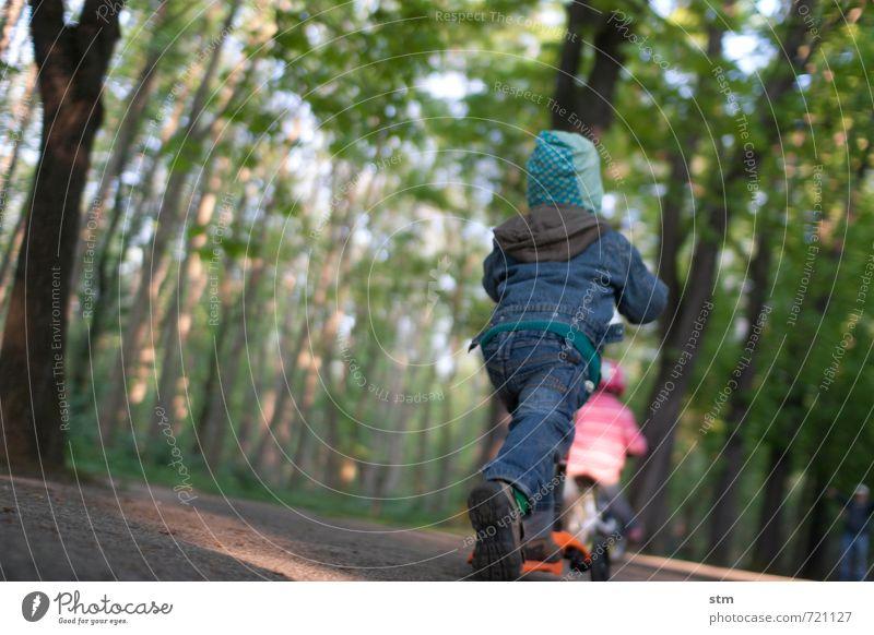auf und davon Mensch Kind Natur Baum Freude Wald Leben Bewegung Junge Wege & Pfade Sport Spielen Freundschaft Park Freizeit & Hobby Zusammensein