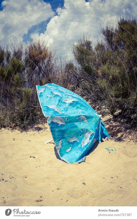 Alter Sonnenschirm Himmel Natur Ferien & Urlaub & Reisen alt Pflanze Strand Umwelt Wärme Sand Stimmung dreckig Lifestyle trist Wind Schönes Wetter kaputt