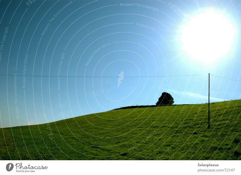 Schattenspender Gegenlicht Stromtransport Horizont Lichtkugel Zauberstab Morgen Sonne lolipop Bodenerhebung