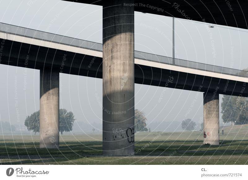 echt | stabil Umwelt Natur Landschaft Baum Wiese Brücke Bauwerk Architektur Verkehr Verkehrswege Straßenverkehr Wege & Pfade Hochstraße trist Stadt Sicherheit