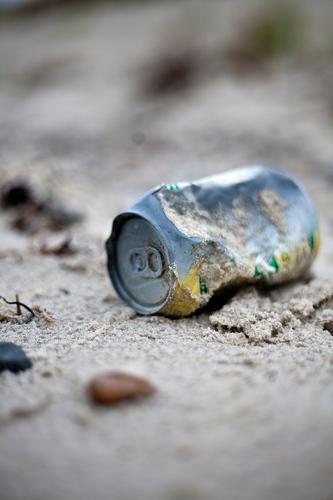 Strand(un)gut Natur Ferien & Urlaub & Reisen Landschaft Umwelt Herbst Küste Insel Urelemente Ostsee Müll Zukunftsangst Sorge Sandstrand Klimawandel Dose