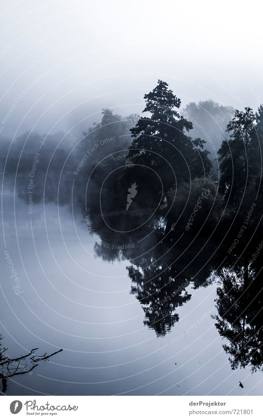 Nahe im Nebel Freizeit & Hobby Angeln Ferien & Urlaub & Reisen Tourismus Ausflug Umwelt Natur Landschaft Pflanze Urelemente Herbst Klima Schönes Wetter Baum
