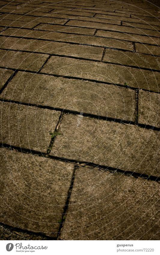 { wegweisend } hier lang warum Bürgersteig gehen kalt Einsamkeit Promenade Wege & Pfade dort lang wo lang? woher? wohin? ich geh meinen weg long way home