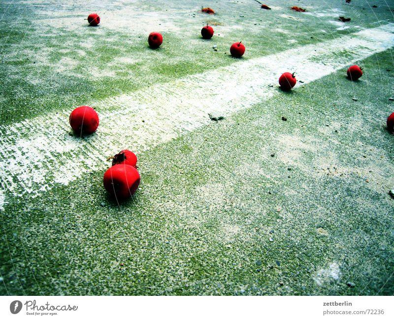 Fallobst rot Kirsche Steinfrüchte Mitte Parkplatz Fahrbahnmarkierung Herbst Beeren Kernobst betondecke Bodenmarkierung