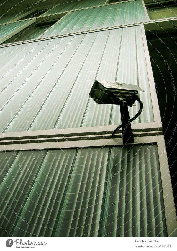 Here's Looking at You, Kid! II Leben Wand Mauer Linie Sicherheit Zukunft Kabel Fotokamera Streifen Dieb Video filmen überwachen Überwachungsstaat Überwachungskamera 1984
