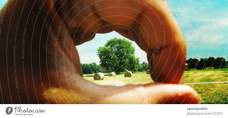 Guckloch in die Natur Natur Hand Himmel Baum blau Wolken gelb Ferne Gras Weide Loch Strohballen