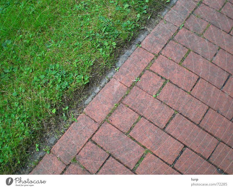 bodenlose frechheit - heute: mit boden ;-) Umwelt Natur Pflanze Erde Gras Dorf Menschenleer Verkehrswege Fußgänger Straße Stein dreckig einfach unten grün rot