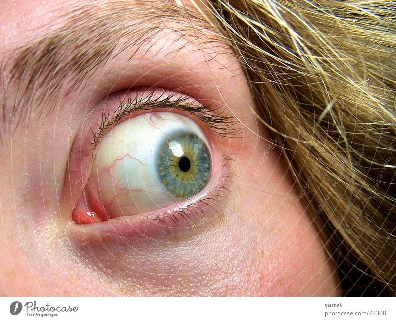 AAAAAAAAAAAAH!!! Blick Schock gruselig Panik Kontaktlinse Pupille Licht Gefäße Mann Wimpern Augenbraue blond Rauschmittel Entzug verfolgungswahn Verfolgung
