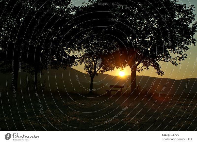 Morgensonne Baum Sonne Einsamkeit Berge u. Gebirge Landschaft Bank Sonnenbank