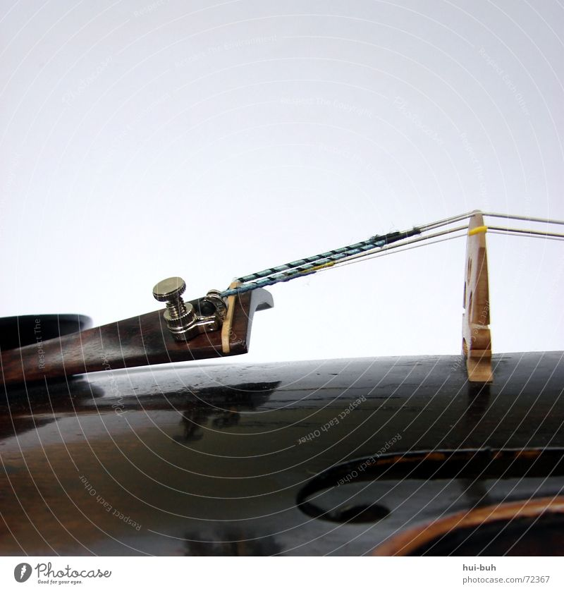 musik .. Geige Steg Musik Kinn Physik Zufluchtsort Zuneigung Orchester Wunsch schön interessant Musikinstrument Freiheit Stimme Ton tonhöhe kinnhalter Loch