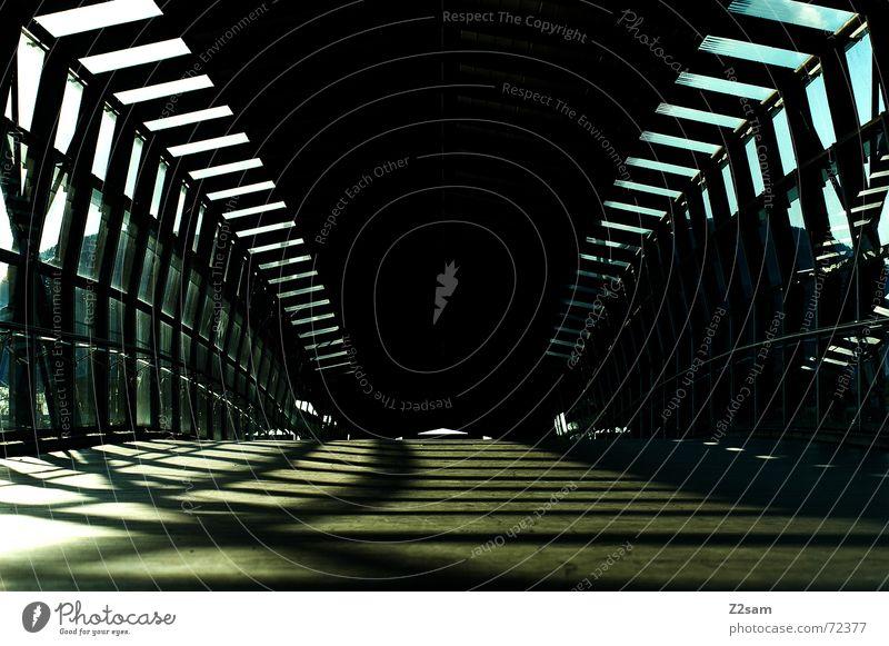 always straightforward II Tunnel Tunnelblick Licht Sonnenstrahlen Holz gehen Physik Muster light Brücke holzweg Wärme lines Linie