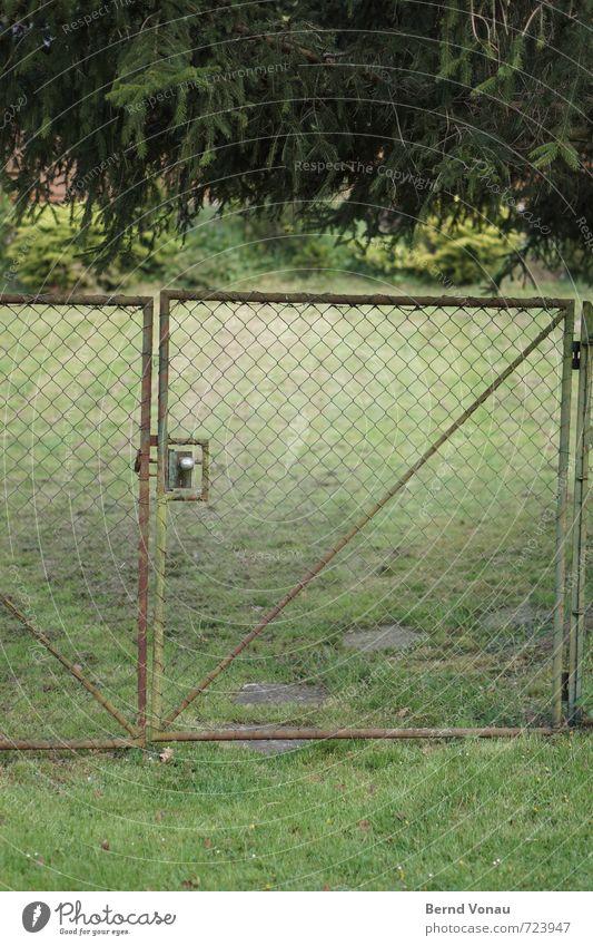 tiefgrün Menschenleer Gartentor Stahl Maschendraht Zaun Tor Knauf Wiese Tanne hängen Neigung Eingang Zugang bücken Fußweg