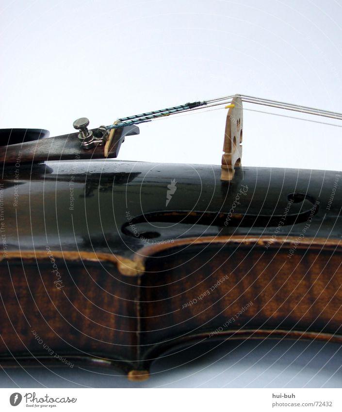 violine schön Baum Spielen Gefühle Holz Denken Musik Zusammensein Wunsch Steg Hals Ton Musikinstrument müssen singen finden