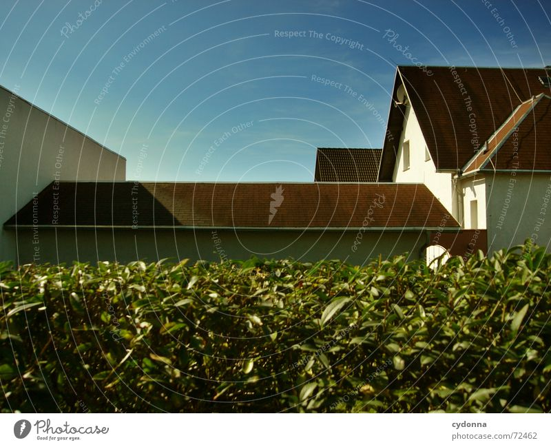 Hinter der Hecke // 1 Haus Dorf Wohnsiedlung Dach Fenster ruhig anonym komplex Bauweise Architektur Häusliches Leben Himmel Garten Strukturen & Formen