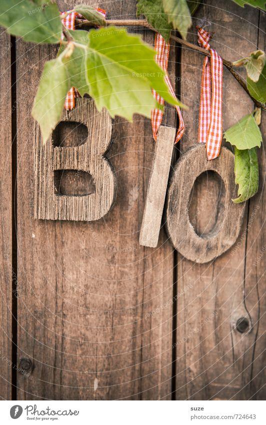 BiO Holz Natur grün Gesunde Ernährung Blatt Umwelt Frühling natürlich Gesundheit Lifestyle Lebensmittel braun Freizeit & Hobby frisch Dekoration & Verzierung