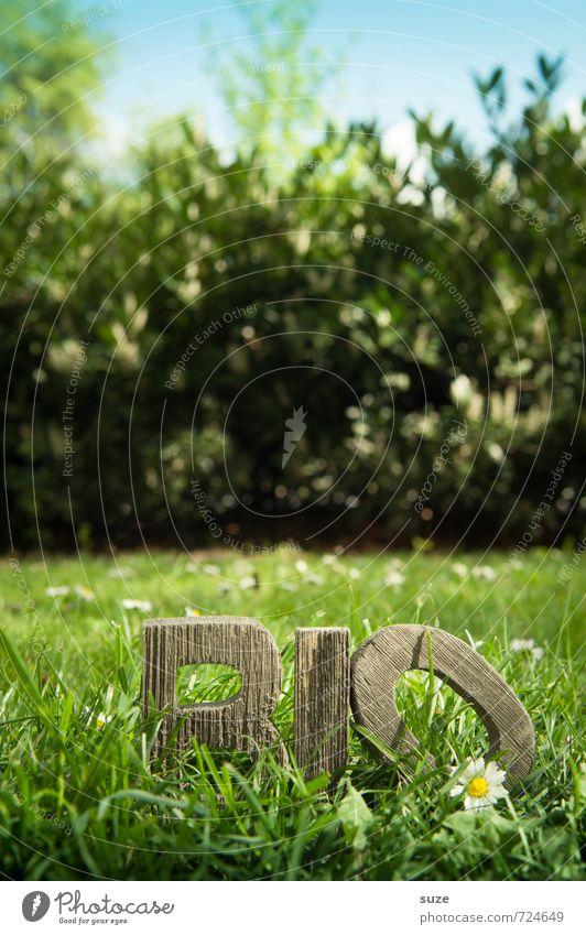 BiO Land Natur grün Gesunde Ernährung Umwelt Frühling Wiese Gras natürlich Gesundheit Holz Lifestyle Lebensmittel Freizeit & Hobby frisch Dekoration & Verzierung authentisch
