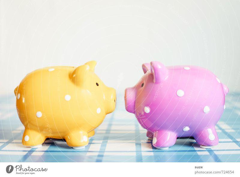 Sau mich nicht so an! blau gelb lustig klein Glück rosa Lifestyle Design Dekoration & Verzierung Armut paarweise niedlich kaufen Kitsch Geld Kunststoff