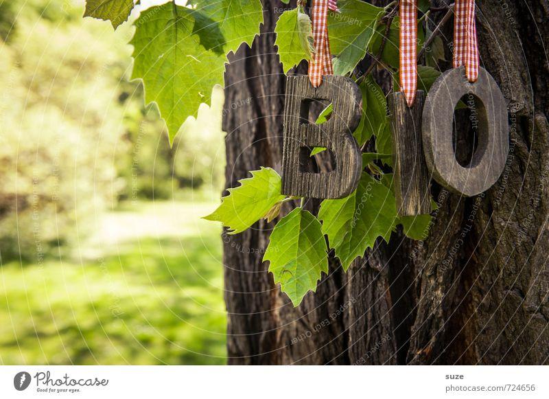BiO Baum Natur grün Baum Gesunde Ernährung Blatt Umwelt Frühling Wiese natürlich Gesundheit Lifestyle Lebensmittel Freizeit & Hobby frisch Dekoration & Verzierung authentisch