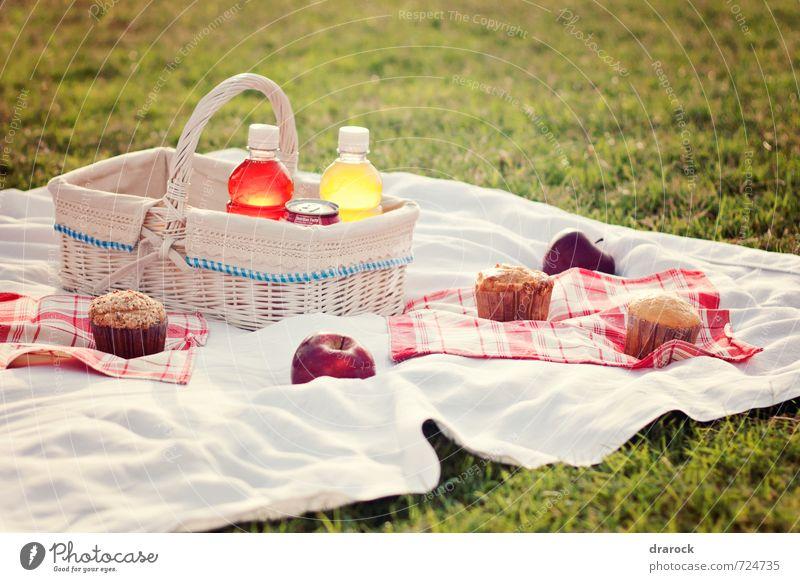 Picnic Frucht Apfel Kuchen Picknick Getränk trinken Erfrischungsgetränk Limonade Saft süß Cupcake Korb rot Gras Park Feld Flasche Farbfoto Außenaufnahme