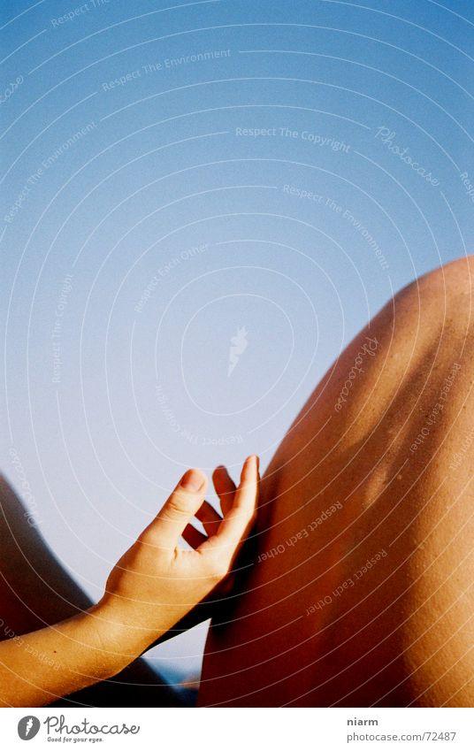 Streicheleinheit Frau Himmel Natur schön Hand Wärme Liebe Glück natürlich Paar Luft Zusammensein Haut Rücken Finger berühren