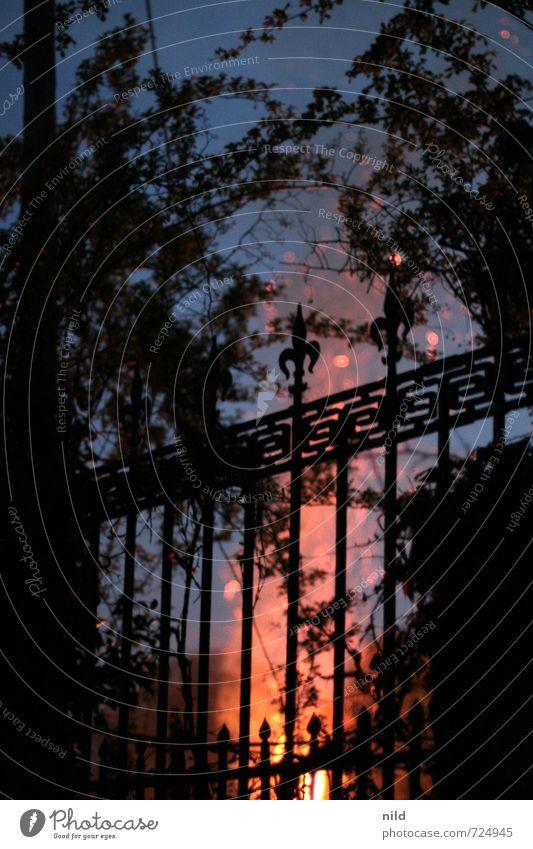 BURN Feste & Feiern Kultur Ritual Umwelt Natur Urelemente Feuer Sträucher Garten Gartentor Zaun Metall Wärme blau rot schwarz Feuerstelle Osterfeuer Hecke