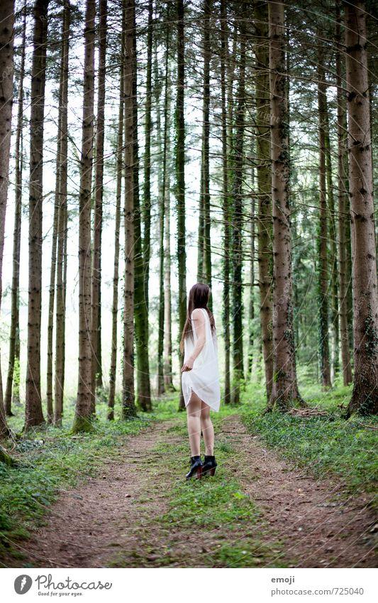 wohin? feminin Junge Frau Jugendliche 1 Mensch 18-30 Jahre Erwachsene Umwelt Natur Wald Kleid außergewöhnlich dünn Geister u. Gespenster geisterhaft Einsamkeit