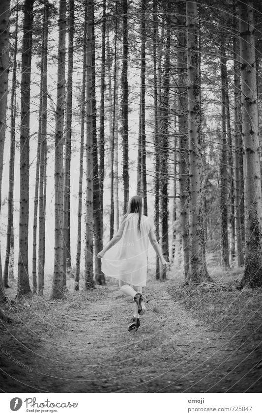 steht ein Engel im Walde feminin Junge Frau Jugendliche 1 Mensch 18-30 Jahre Erwachsene Natur außergewöhnlich dunkel Schwarzweißfoto Außenaufnahme Tag
