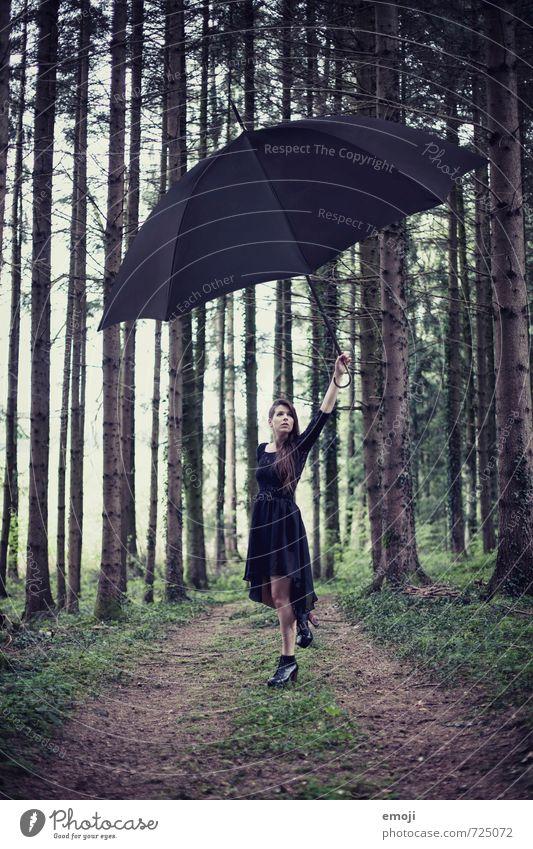 surreal / 2200 feminin Junge Frau Jugendliche 1 Mensch 18-30 Jahre Erwachsene Natur Wald außergewöhnlich dunkel Regenschirm Surrealismus Farbfoto Außenaufnahme
