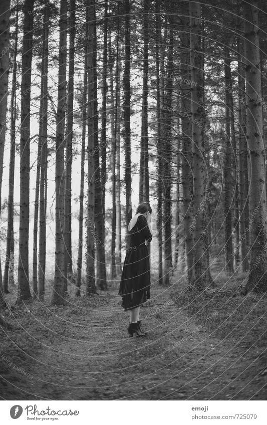in the woods Mensch Natur Jugendliche Einsamkeit Junge Frau Landschaft 18-30 Jahre dunkel Wald Umwelt Erwachsene feminin einzeln gruselig
