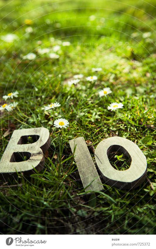BiO Frisch Natur grün Gesunde Ernährung Umwelt Frühling Wiese Gras natürlich Gesundheit Holz Lifestyle Lebensmittel Freizeit & Hobby frisch