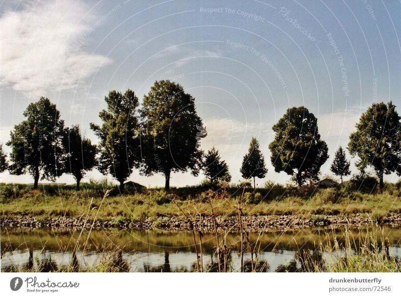 Auf der anderen Seite Baum Blatt Gras Wiese grün weiß Reflexion & Spiegelung Sommer Natur Fluss Himmel blau Schatten Wasser Stein