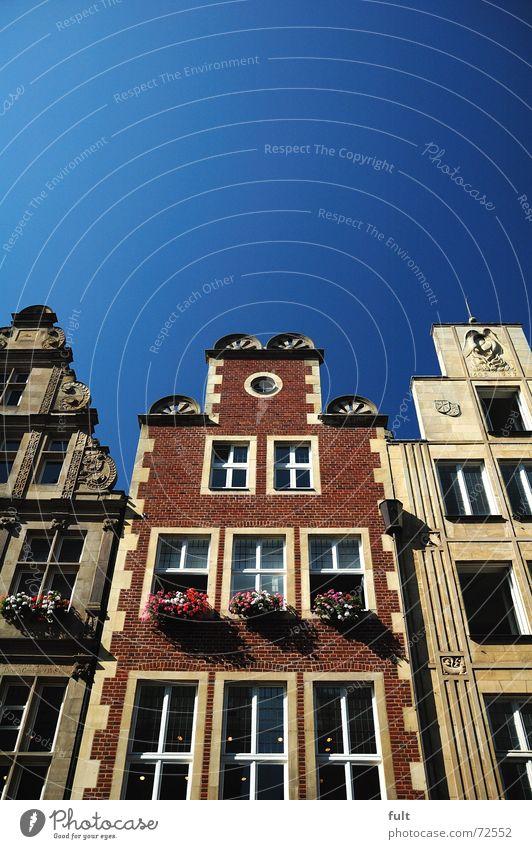 fassade Haus Fenster Fassade Blumenkasten Himmel Münster blau Architektur