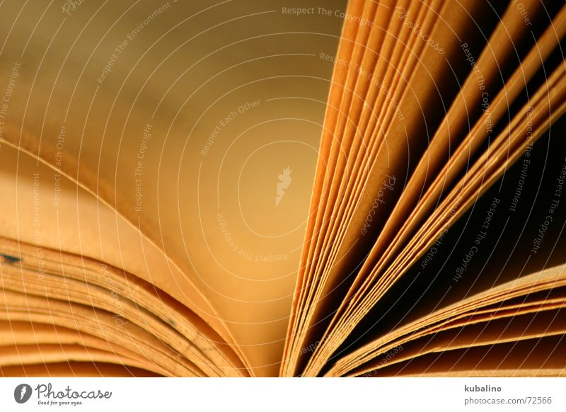 Märchenstunde alt Buch Papier lesen Schriftzeichen Buchseite Leser