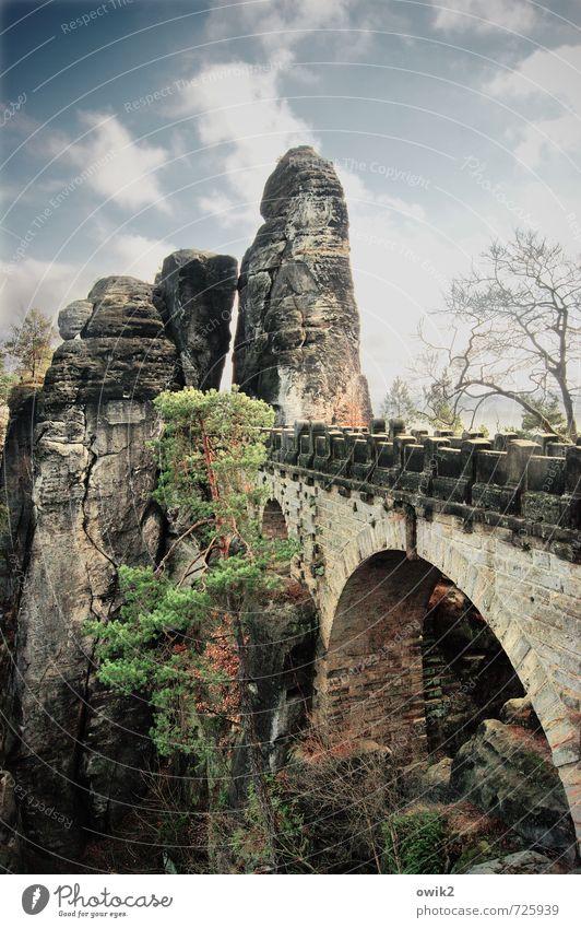 Kleckerburg Ferien & Urlaub & Reisen Baum Frühling Deutschland Tourismus Idylle hoch groß Ausflug Brücke Sandstein Elbsandsteingebirge Bastei Sächsische Schweiz
