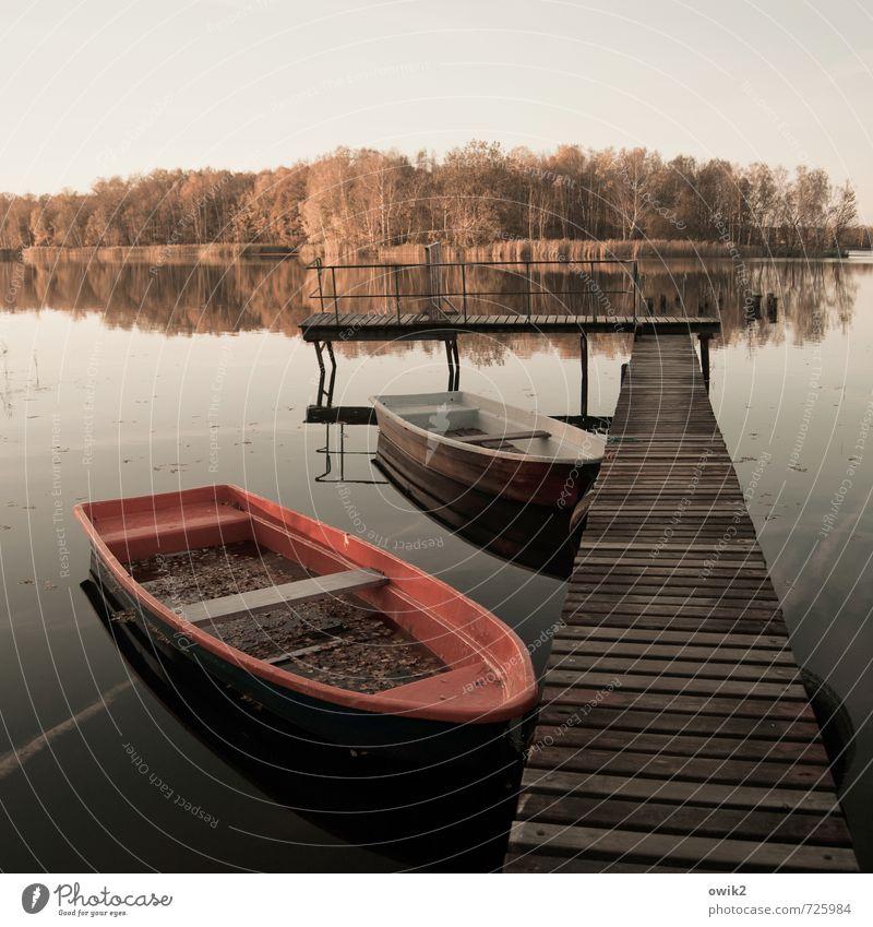 Steg und Insel Umwelt Natur Landschaft Wasser Himmel Horizont Herbst Klima Wetter Baum Wald Seeufer Ruderboot Anlegestelle groß Stimmung Gelassenheit ruhig