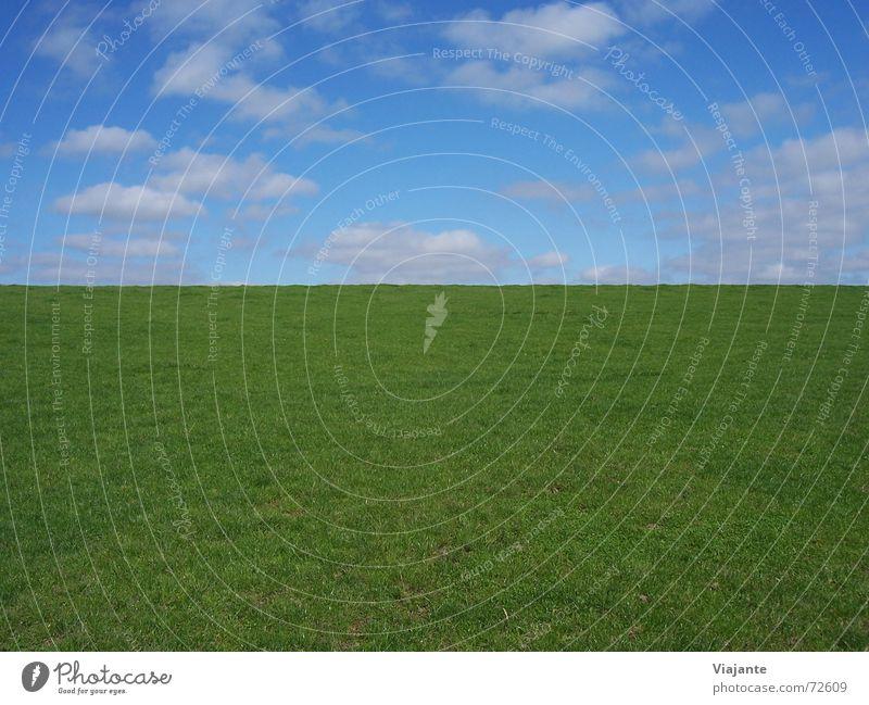 vertikale Horizontlinie Natur Himmel grün blau Sommer ruhig Wolken Wiese Gras Wärme Deutschland Hintergrundbild Physik Niedersachsen