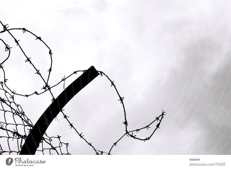 gefangen Stacheldraht Zaun stachelig Ausweg Wolken Barriere Maschendraht driften Ausbruch eng Sehnsucht Himmel Justizvollzugsanstalt Freiheit frei freedom