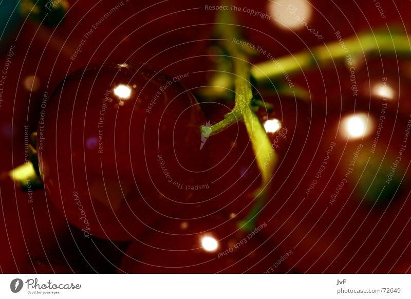 Johanna Vitamin Gesundheit rot grün Sommer Johannisbeeren Frucht Makroaufnahme Ernährung