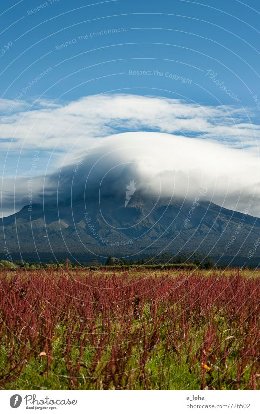 Welcome To Taranaki Umwelt Natur Landschaft Pflanze Urelemente Himmel Wolken Gewitterwolken Herbst schlechtes Wetter Unwetter Blüte Felsen Berge u. Gebirge